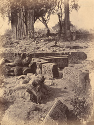 Lion capitals, torana beams and other sculpture fragments lying on the ground near the Great Stupa, Sanchi, Bhopal State